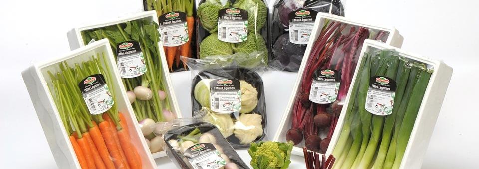 Mini légumes : des idées pour les cuisiner