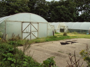 1280px-Plastic_tunnel_greenhouses,_Hesketh_Park