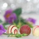 Le chocolat : luxe et volupté