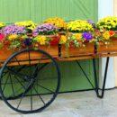 Quel pot de fleurs choisir pour embellir son jardin ?